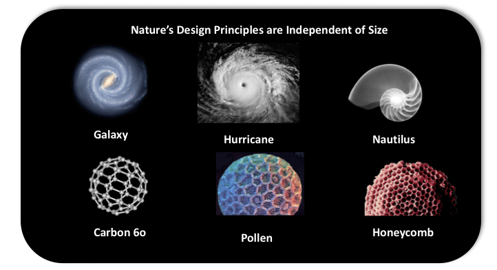 Watsondesign